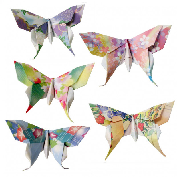 Paper Metamorphosis, Beautiful Looking Origami Butterflies | 620x620